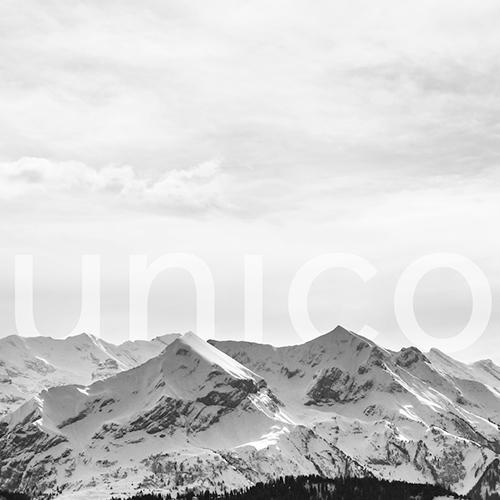 Unico ServiceNow Referenzkunde