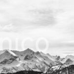 Unico Data AG Kundenprojekt FROX AG